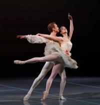 רקדני בלט/ צילום:  Shutterstock/ א.ס.א.פ קריאייטיב