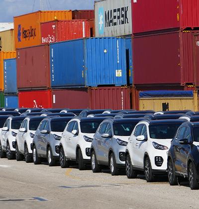 מכוניות חדשות בנמל חיפה / צילום: shutterstock, שאטרסטוק