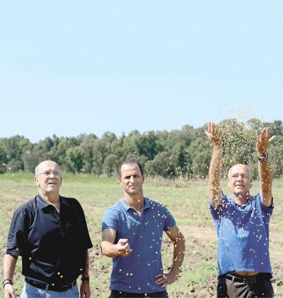 """שרון דביר (מימין), דותן בורנשטיין (במרכז) ועומר מסארווה (משמאל). """"פעם יזם ערבי לא היה עובר את שלב המזכירה בקרן הון סיכון"""" / צילום: איל יצהר"""