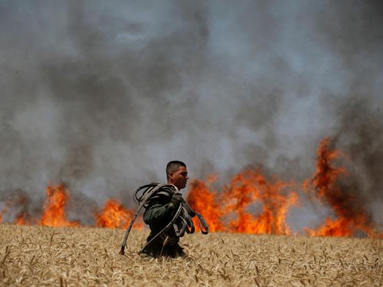 שריפה בעוטף עזה / צילום: רויטרס - Amir Cohen