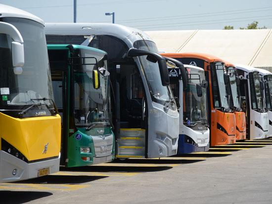 אוטובוסים של מרכבים / צילום: איל יצהר