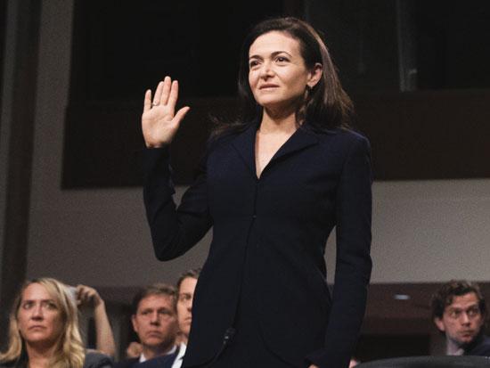 מתייצבת בחזית, ומקבלת עליה את האשמה. סנדברג בזמן עדותה בוועדת המודיעין של הסנאט, בספטמבר האחרון / צילום: דרו אנגרגר, גטי אימג'ס