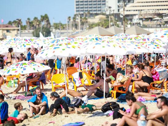 חוף פרישמן בתל אביב / צילום: שלומי יוסף