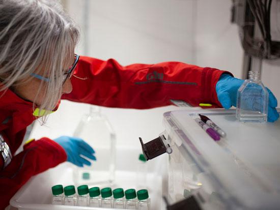 מדענית דוגמת פלנקטון / צילום: Abbie Trayler-Smith - Greenpeace