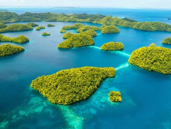 האי פאלאו באוקיינוס השקט / צילום: Shutterstock | א.ס.א.פ קריאייטיב