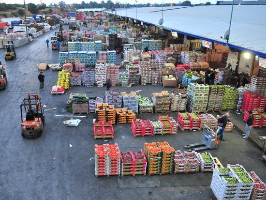 השוק הסיטונאי / צלם: רפי קוץ