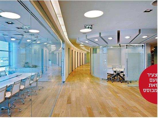 משרד צעיר ועם זאת מבוסס /צילום: עוזי פורת