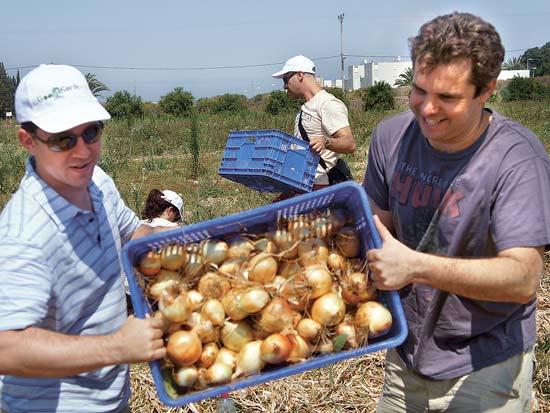 מאיר ברנד ועובדי גוגל, יום תרומה לקהילה / צילום: סיון אוזן