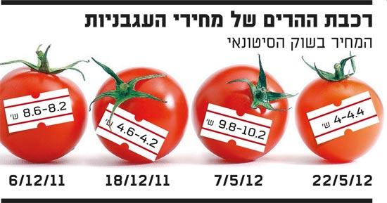 רכבת ההרים של מחירי העגבניות