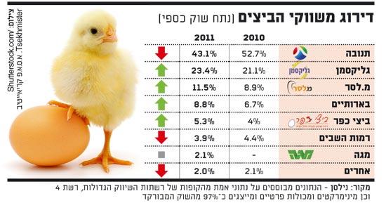 אינפו: דירוג משווקי הביצים
