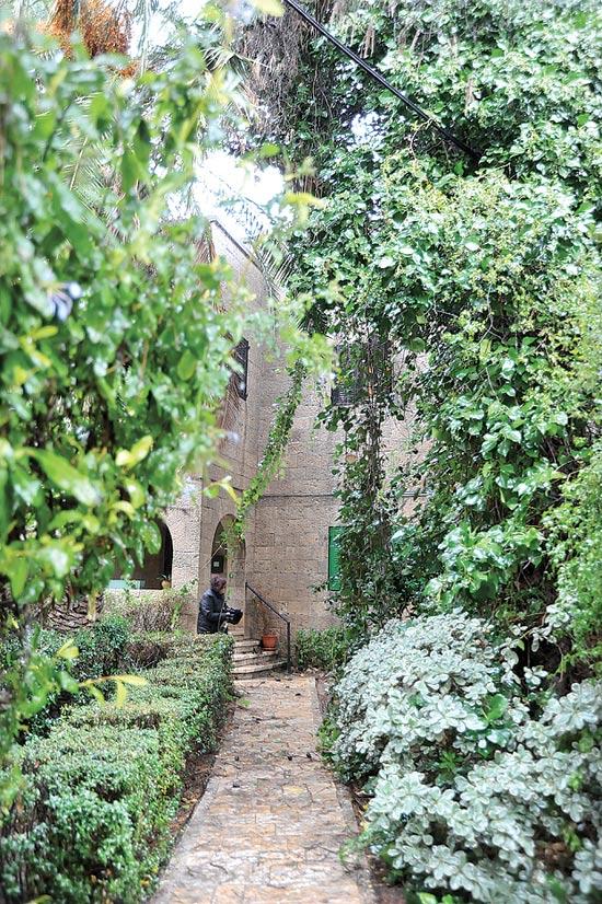 רחוב אלחריזי 10, ירושלים / צילום: יחצ