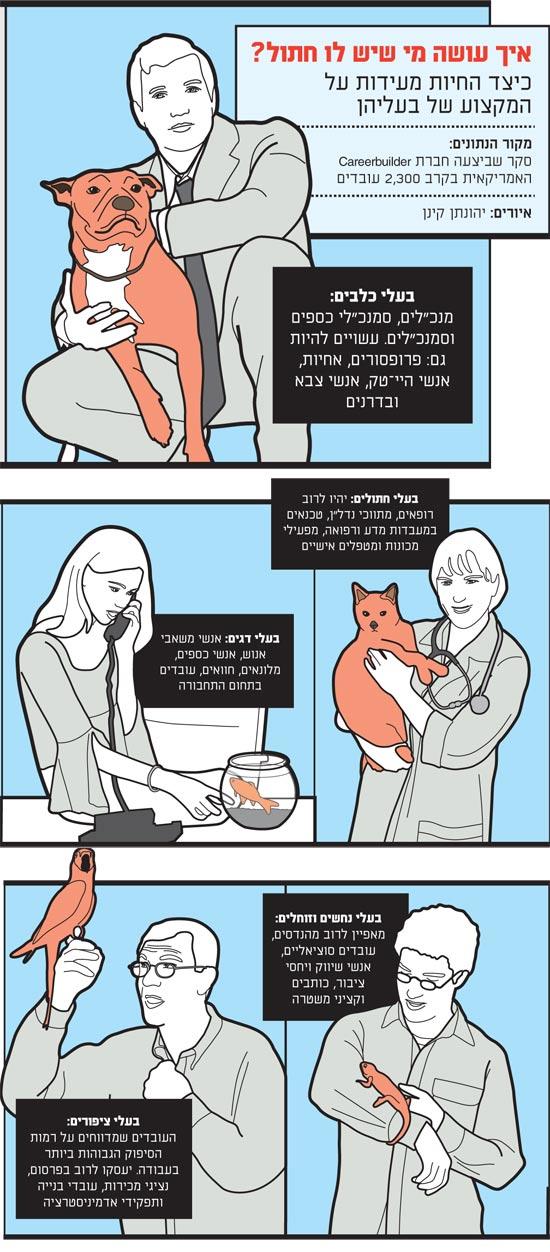 איך עושה מי שיש לו חתול / איור: יהונתן קינן