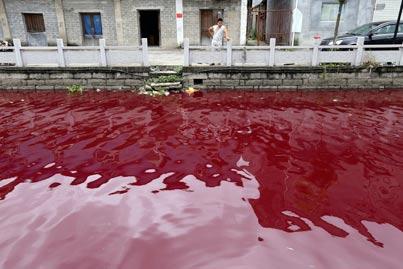 מסביב לגלובוס - זיהום סביבתי  / צילום: רויטרס