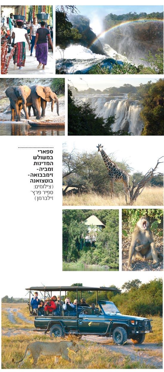 אפריקה / צילום: ספיר פרץ זילברמן