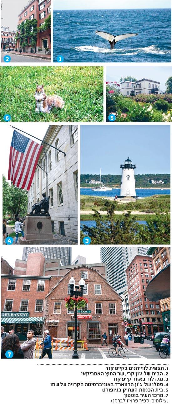 בוסטון / צילום: ספיר פרץ-זילברמן