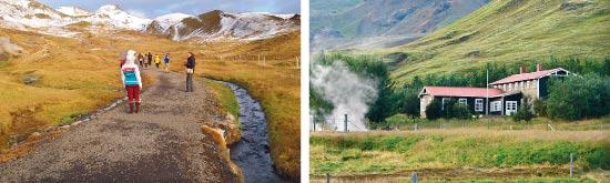 חווה אקולוגית באיסלנד / צילומים: חברת גו-אקו וגיל פז