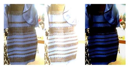 איזה צבע השמלה/ קרדיט: טאמבלר