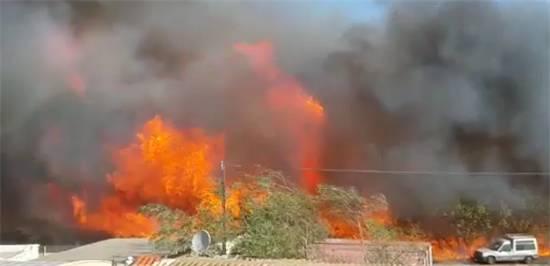 השריפה בחיפה (צילום מסך)