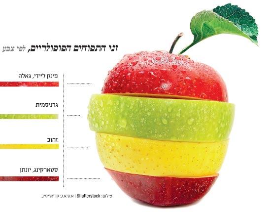 זני התפוחים הפופולריים, לפי צבע