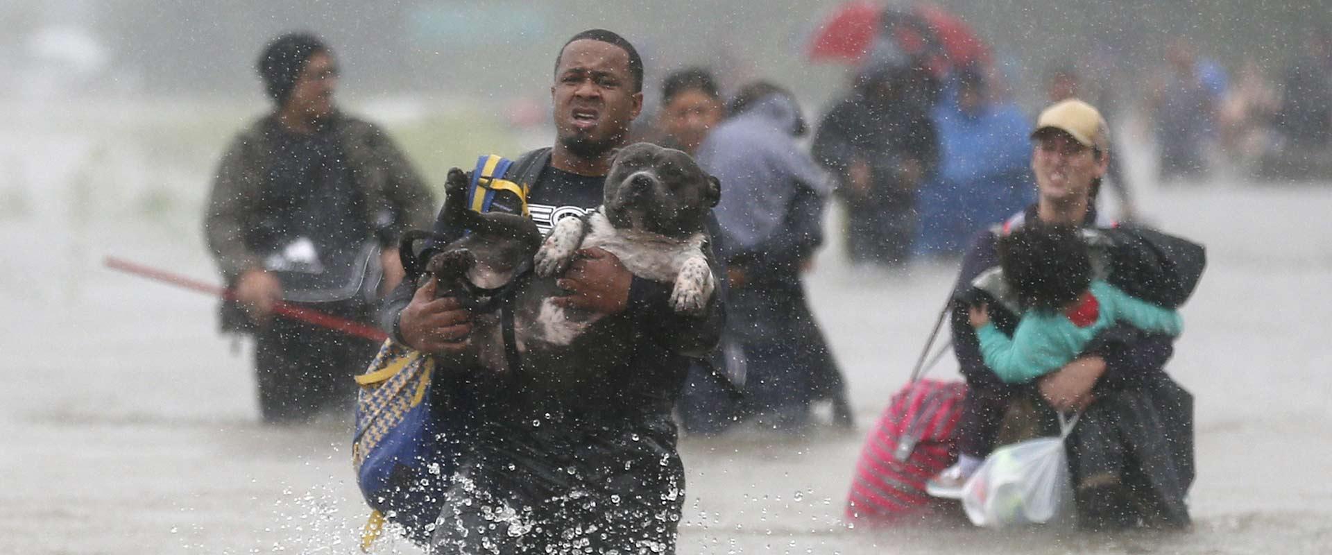 הוריקן הארווי/ צילום: רויטרס