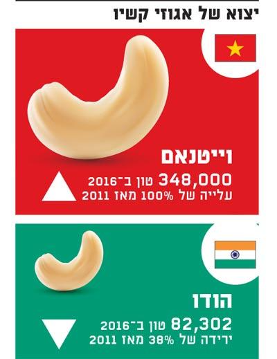 יצוא של אגוזי קשיו