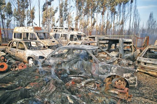 שריפות בפורטוגל/ צילום: פדרו נונס, רויטרס
