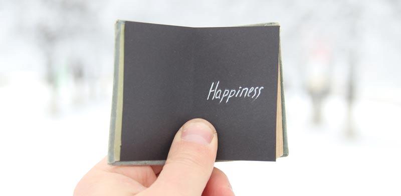 כיצד לחווט את המוח לשמחה / צילום: shutterstock