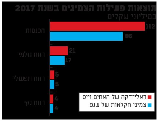 תוצאות פעילות הצמיגים בשנת 2017