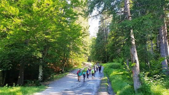 טיולי הליכה בטבע עם כל המשפחה/צילום: ליהי רון