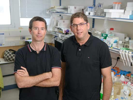 פרופ' רותם שורק משמאל, לצד פרופ' ערן אלינב / צילום: באדיבות מעבדת הצילום של מכון ויצמן למדע