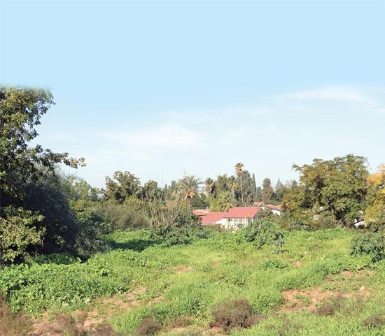 שטח חקלאי בין יהוד לגני יהודה./ צילום: איל יצהר