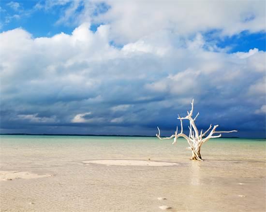 הרבור אי ההרבור, צילום: שאטרסטוק