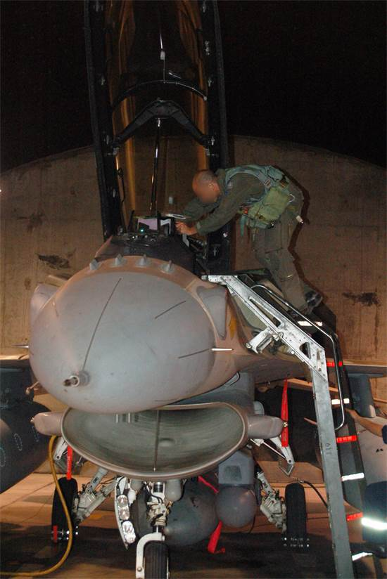 טייס חיל האוויר / צילום: באדיבות דוצ