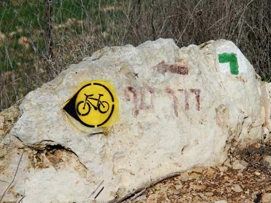 שביל אופניים / צילום: אורלי גנוסר