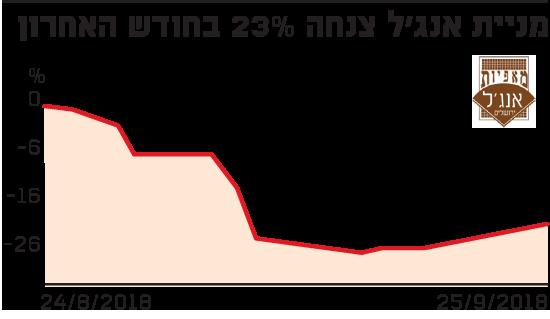 מניית אנג'ל צנחה 23% בחודש האחרון