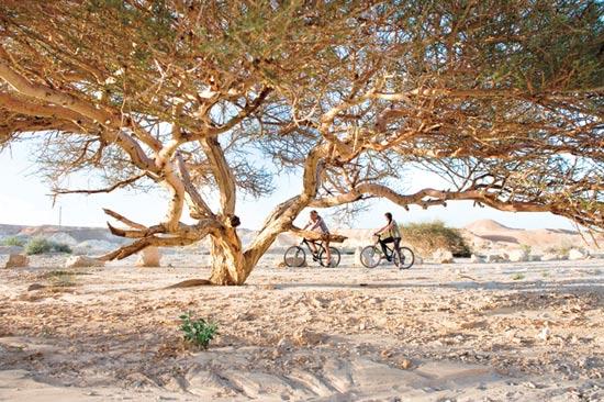 שביל ישראל לאופניים / צילום: כרמית חסין