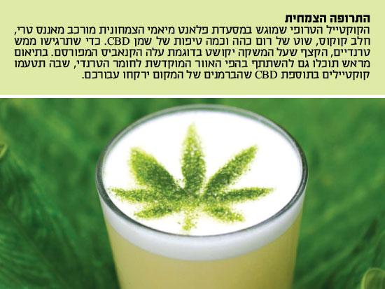 התרופה הצמחית