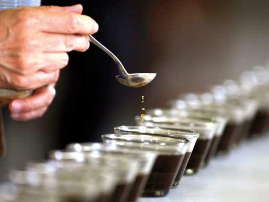 קפה / צילום: רויטרס