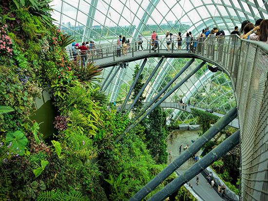 Gardens by the Bay, סינגפור, אחת החממות /  צילום: Shutterstock | א.ס.א.פ קריאייטיב