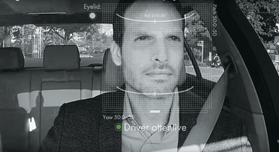 "Eyesight / צילום: יח""צ"