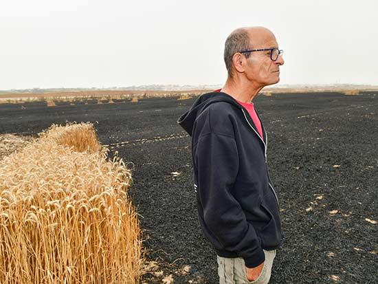 """""""יש תסכול וכאב שרק חקלאי יכול להבין"""", אומר דני רחמים מקיבוץ נחל עוז / צילום: רפי קוץ"""