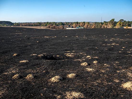 אדמה חרוכה באזור כיסופים / צילום: אייל פישר