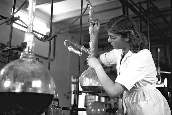 עוזרת מעבדה בפרוטרום  / צילום: הנס פין לעמ