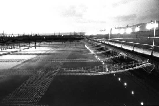 מפעל אורמת ביבנה / צילום: משה מילנר לעמ