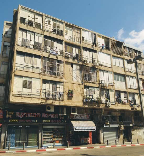 תל אביב לבנדה  20/ צילום: איל יצהר