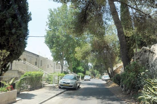 בתים בשכונת ניות / צילום :איל יצהר