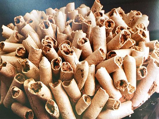 עוגת הקונקורד המפוארת / צילום: דנה זונשיין