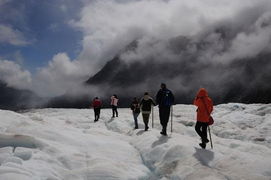 ניו זילנדfox Glacier - South Island/ צילום: Shutterstock | א.ס.א.פ קריאייטיב