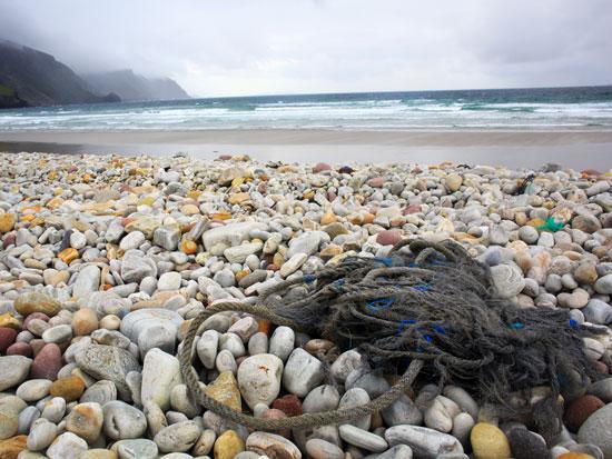 חופים באירלנד / צילום: Shutterstock
