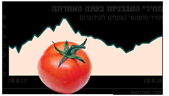 מחירי העגבניות